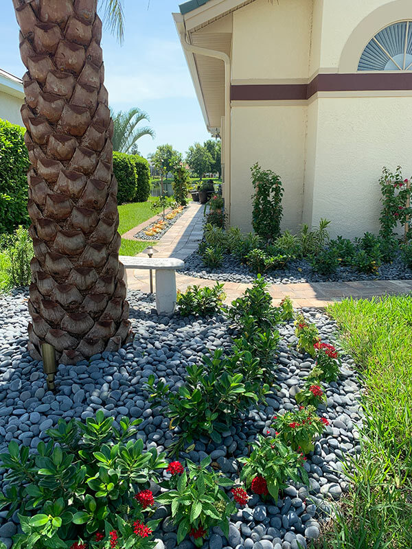 front yard with new landscaping