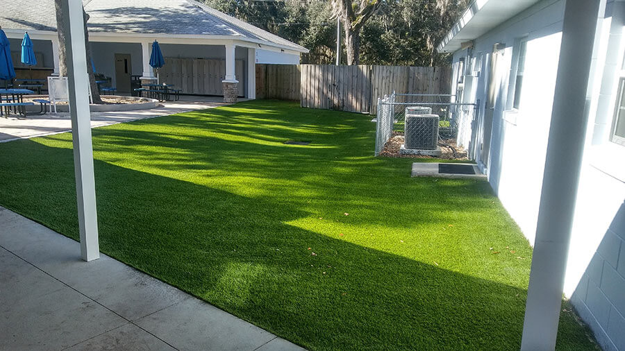 backyard with walkways and landscaping