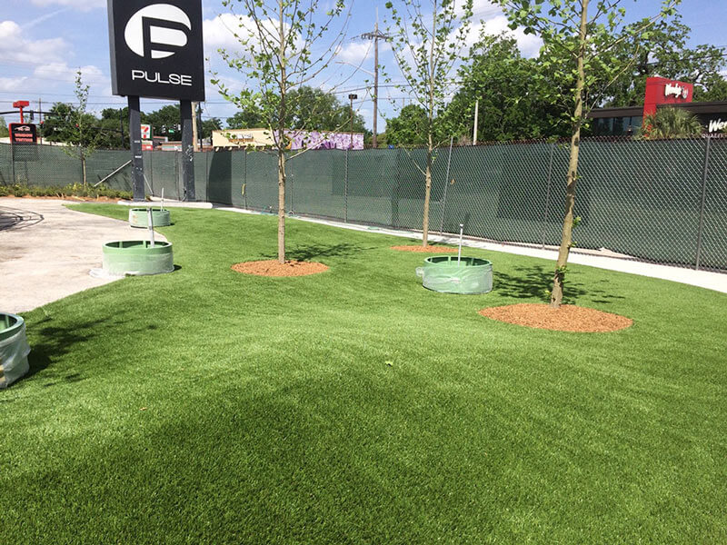 new landscaping outside of Pulse